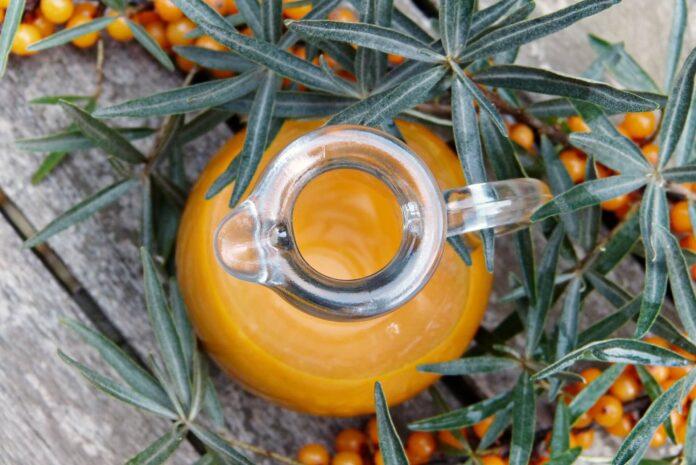 liście i olej z rokitnika
